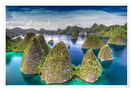 Jones & Shimlock - Indonesia, West Papua, Raja Ampat