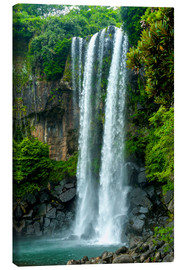 Canvas print  Jeongbang waterfall - Michael Runkel