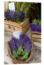Forex  Bunches of cut lavender - Brenda Tharp
