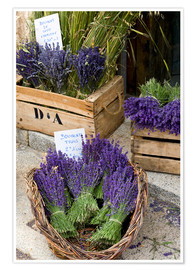 Premium poster  Baskets with lavender bouquets - Brenda Tharp