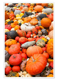 Premium poster Fruits of autumn