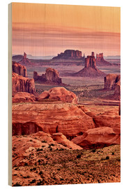 Wood  Monument valley - Ann Collins