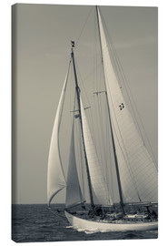 Canvas print  Sailboat in the wind - Walter Bibikow