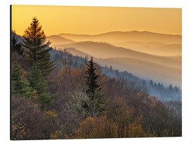 Aluminium print  Great Smoky Mountains National Park - Ann Collins