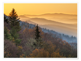 Premium poster Great Smoky Mountains National Park