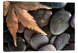 Canvas print  Maple leaf on pebbles - Don Paulson