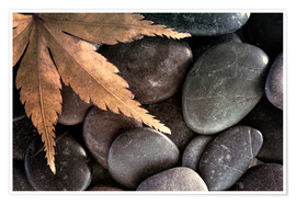 Premium poster Maple leaf on pebbles