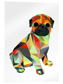 Acrylic print  Molly Pug 2 - Miss Coopers Lounge
