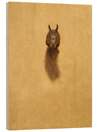 Tim Hayward - Leaping Red Squirrel -