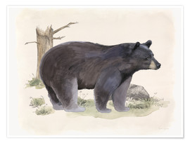 Premium poster Wildlife - Bear