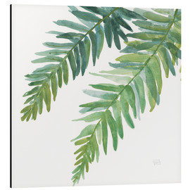 Aluminium print  Ferns Square I - Chris Paschke