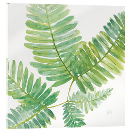 Acrylic print  Ferns Square II - Chris Paschke