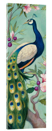 Acrylic print  Pretty Peacock II - Julia Purinton