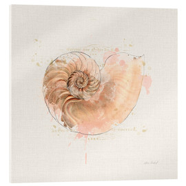 Acrylic print  Shell Collector II - Katie Pertiet