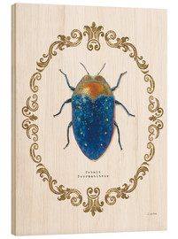 James Wiens - Adorning Coleoptera V