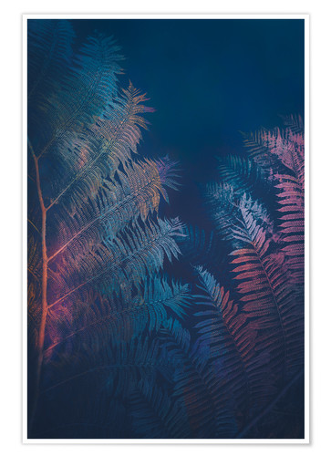 Premium poster Abstract Fern