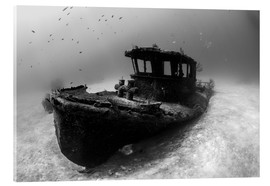 Acrylic print  A tugboat wreck in the Bahamas - Brook Peterson