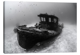 Canvas print  A tugboat wreck in the Bahamas - Brook Peterson