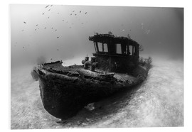 Forex  A tugboat wreck in the Bahamas - Brook Peterson