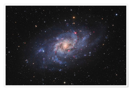 Poster Messier 33, the Triangulum Galaxy