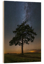 Wood print  Lonely tree under the Milky Way - Yuri Zvezdny
