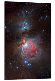Acrylic print  Messier 42, The Great Nebula in Orion - Yuri Zvezdny