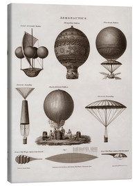 Canvas print  Illustration of early hot air balloon designs - John Parrot