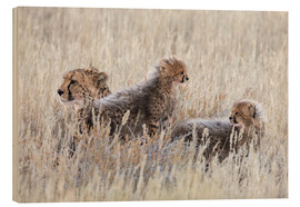 Wood print  Cheetah with cubs