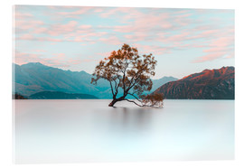 Acrylic glass  The wanaka tree - Nicky Price