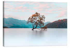 Canvas  The wanaka tree - Nicky Price