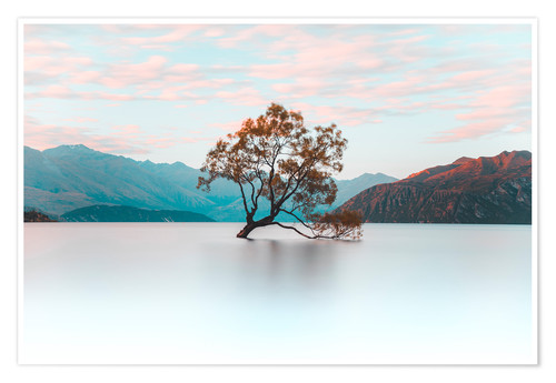 Premium poster The wanaka tree