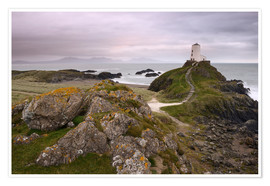 Premium poster The lighthouse on the edge of Llanddwyn Island