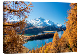 Canvas print  Colorful forests around Lake Sils, Switzerland - Roberto Moiola