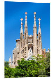 Acrylic print  La Sagrada Familia church in Barcelona - Neale Clarke