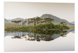 Foam board print  Island on Derryclare Lake, Ireland - Francesco Vaninetti