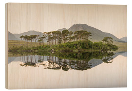Wood print  Island on Derryclare Lake, Ireland - Francesco Vaninetti