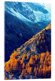 Acrylic print  A paraglider flying in autumn - Christian Kober