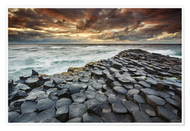 Premium poster  An evening view of the Giant's Causeway - Nigel Hicks