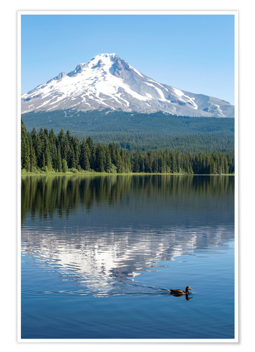 Premium poster Mount Hood in the cascade chain
