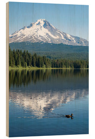 Wood print  Mount Hood in the cascade chain - Martin Child
