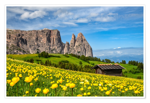 Premium poster Spring on the Alpe di Siusi in South Tyrol