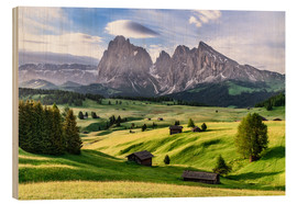 Wood  Alpe di Siusi South Tyrol - Achim Thomae