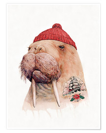 Premium poster Tattooed walrus with red cap