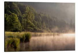 Aluminium print  Foggy sunrise at the lake / landscape - Sebastian Jakob