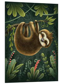 Foam board print  Little Sloth - Elena Schweitzer