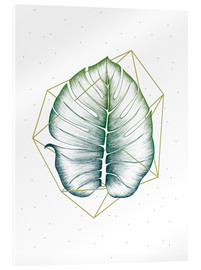 Acrylic glass  Geometry and Nature II  - Barlena