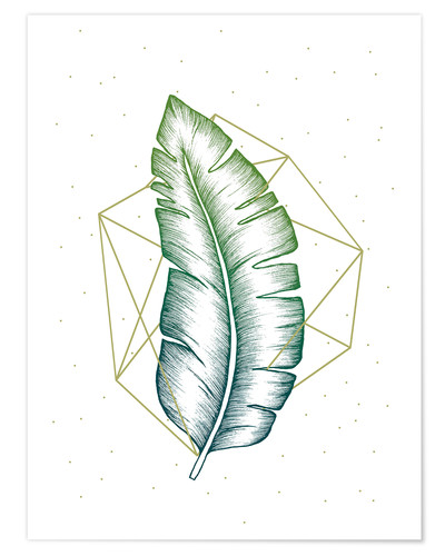 Premium poster Geometry and nature V