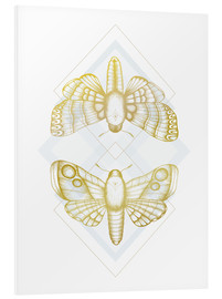 Foam board print  Night owls - gold - Barlena