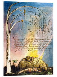 Acrylic print  America a Prophecy - William Blake
