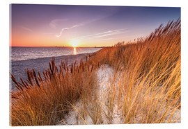 Acrylic print  Sunset in the reed - Nordbilder